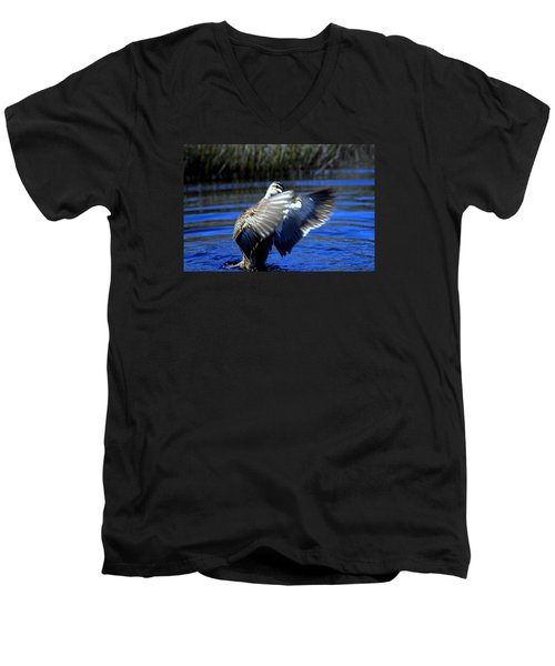 Pacific Black Duck Men's V-Neck T-Shirt by Miroslava Jurcik
