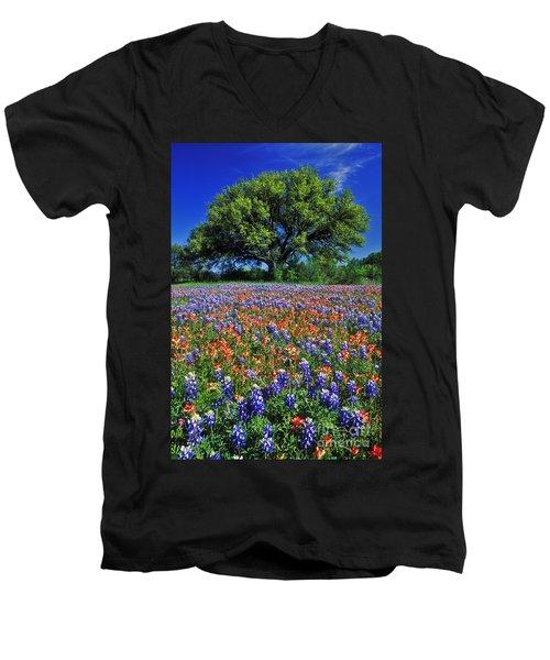 Paintbrush And Bluebonnets - Fs000057 Men's V-Neck T-Shirt by Daniel Dempster