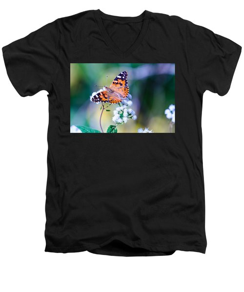 Painted Lady Butterfly 1 Men's V-Neck T-Shirt