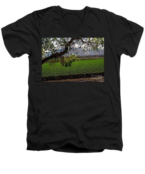 Panoramic Of Winter Lettuce Men's V-Neck T-Shirt by Robert Bales