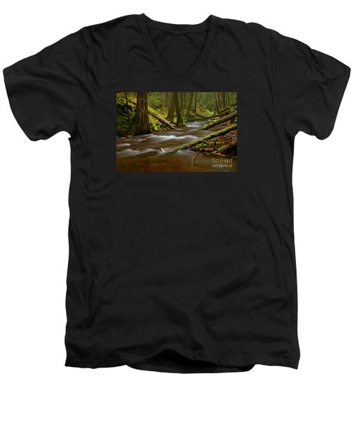Panther Creek Landscape Men's V-Neck T-Shirt by Nick  Boren