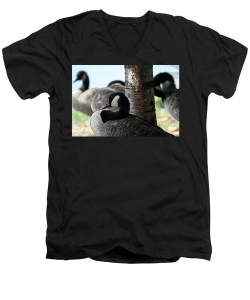 Men's V-Neck T-Shirt featuring the photograph Pap Daddy Big Spring Park by Lesa Fine