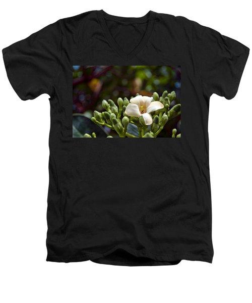 Papaya Flower Men's V-Neck T-Shirt