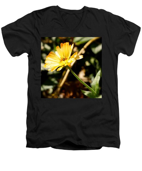 Men's V-Neck T-Shirt featuring the photograph Parade by Photographic Arts And Design Studio