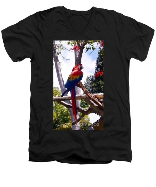 Men's V-Neck T-Shirt featuring the photograph Parrot by Susan Garren