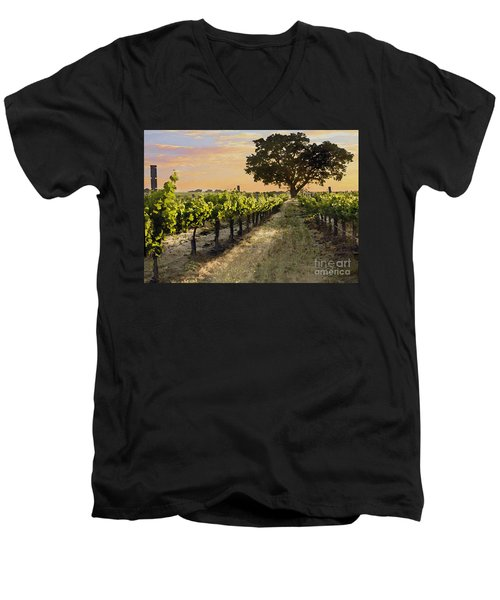 Paso Vineyard  Men's V-Neck T-Shirt