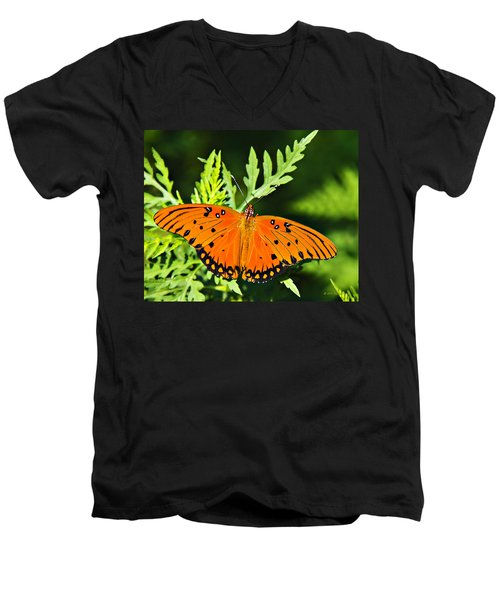 Passion Butterfly Men's V-Neck T-Shirt