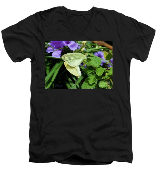 Passion Of The Butterflies Men's V-Neck T-Shirt