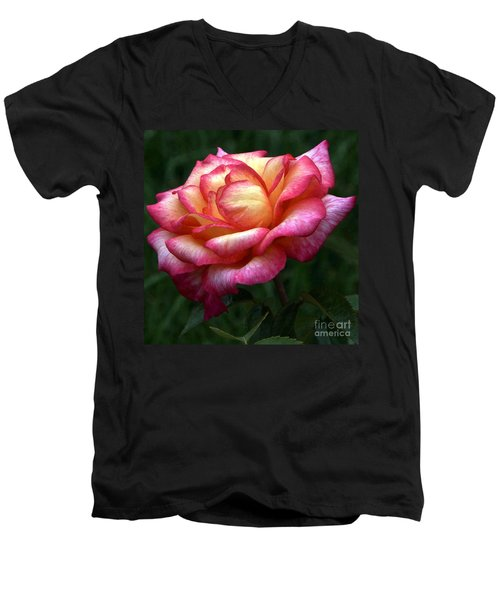 Passionate Shades Of A Perfect Rose Men's V-Neck T-Shirt