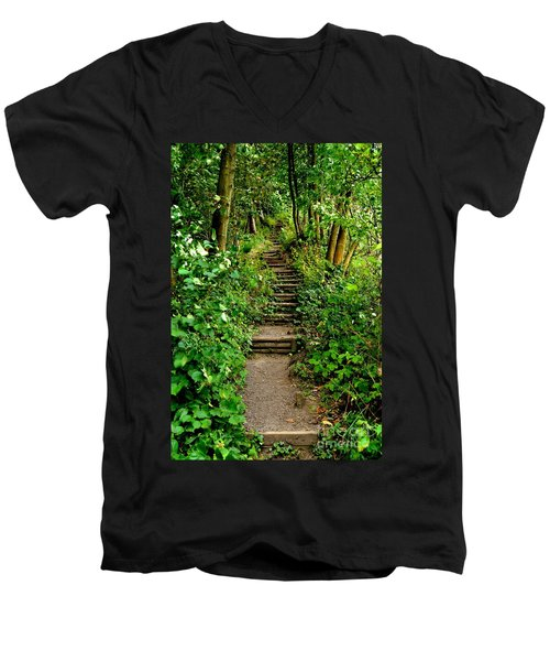 Path Into The Forest Men's V-Neck T-Shirt