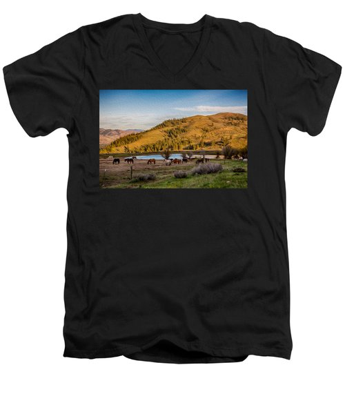 Patterson Mountain Afternoon View Men's V-Neck T-Shirt