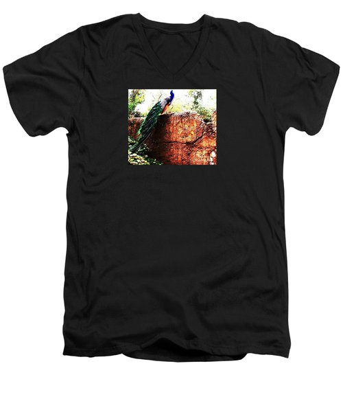 Men's V-Neck T-Shirt featuring the photograph Pavoreal by Vanessa Palomino