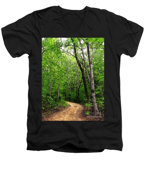 Peaceful Walk Men's V-Neck T-Shirt by Lydia Holly