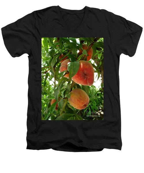 Men's V-Neck T-Shirt featuring the photograph Peaches On The Tree by Kerri Mortenson