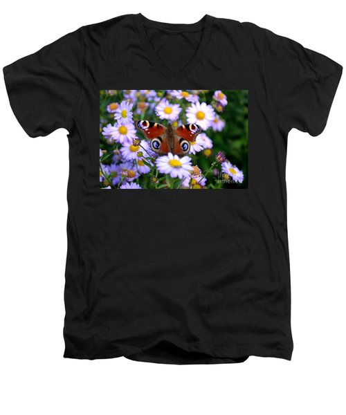 Peacock Butterfly Perched On The Daisies Men's V-Neck T-Shirt