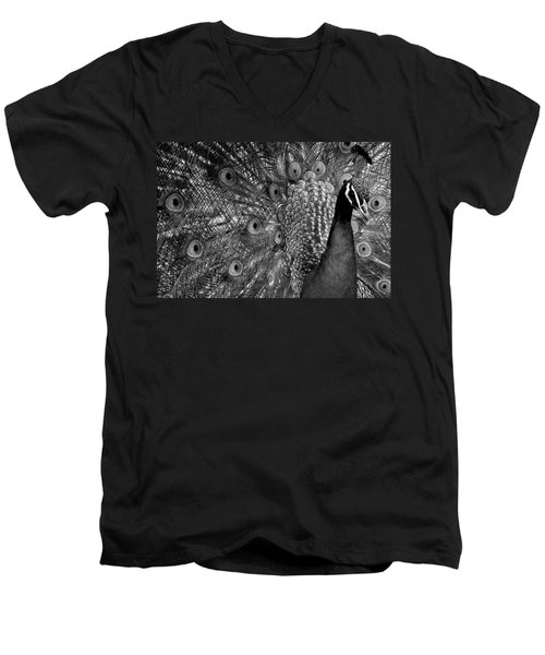 Men's V-Neck T-Shirt featuring the photograph Peacock Bw by Ron White