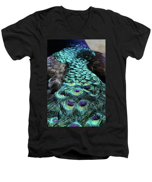 Peacock Trail Men's V-Neck T-Shirt