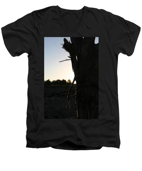 Men's V-Neck T-Shirt featuring the photograph Pealing by David S Reynolds