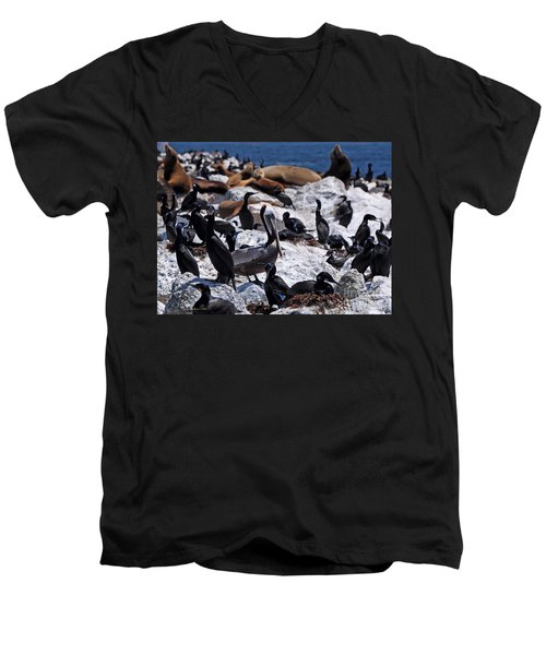Men's V-Neck T-Shirt featuring the photograph Pelican Visitor by Susan Wiedmann