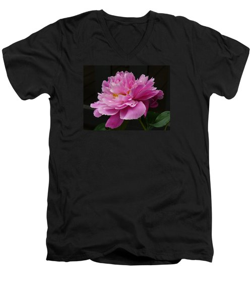 Men's V-Neck T-Shirt featuring the photograph Peony Blossoms by Lingfai Leung