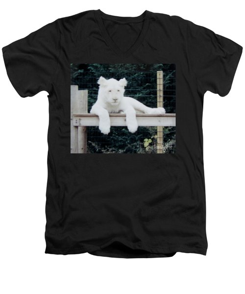 Men's V-Neck T-Shirt featuring the photograph Philadelphia Zoo White Lion by Donna Brown