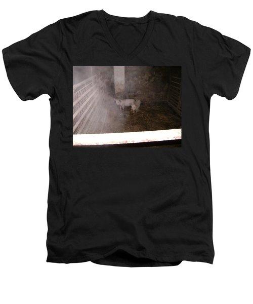 Piggies Men's V-Neck T-Shirt