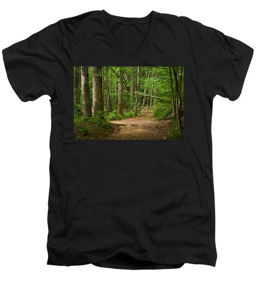 Pinewood Path Men's V-Neck T-Shirt