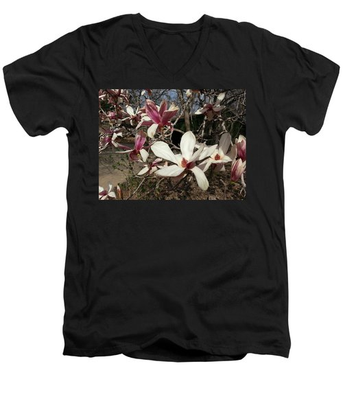 Men's V-Neck T-Shirt featuring the photograph Pink And White Spring Magnolia by Caryl J Bohn