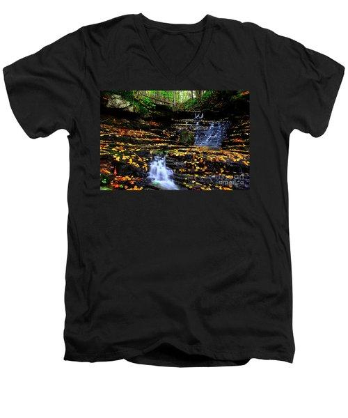 Pipestem Beauty Men's V-Neck T-Shirt by Melissa Petrey