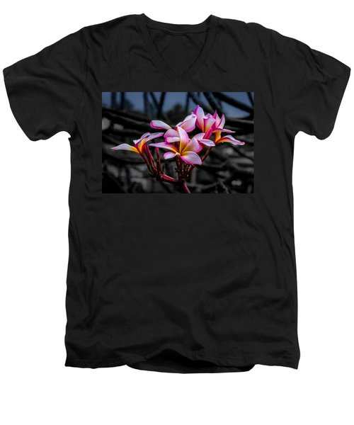 Plumeria Rainbow Ali Men's V-Neck T-Shirt