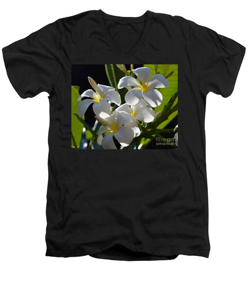 Men's V-Neck T-Shirt featuring the photograph Plumeria's IIi by Robert Meanor
