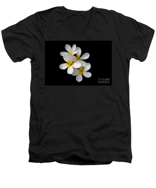 Men's V-Neck T-Shirt featuring the photograph Plumerias Isolated On Black Background by David Millenheft