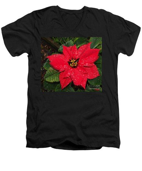 Poinsettia - Frozen In Time Men's V-Neck T-Shirt
