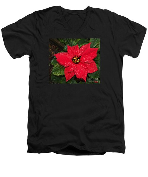 Poinsettia - Frozen In Time Men's V-Neck T-Shirt
