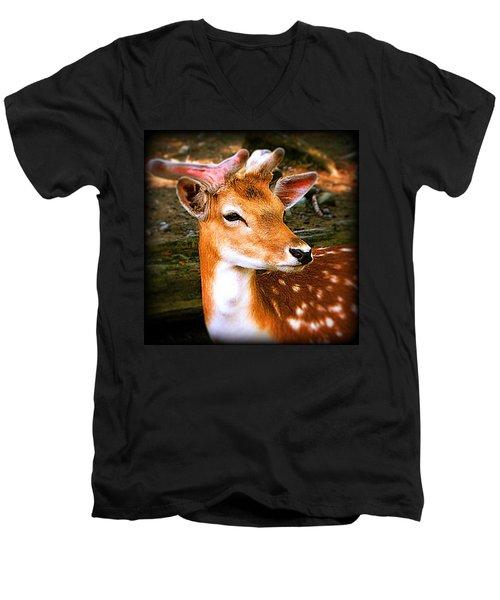 Portrait Male Fallow Deer Men's V-Neck T-Shirt