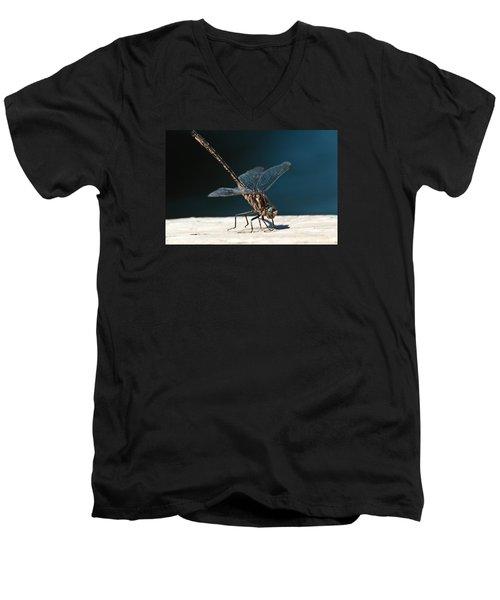 Posing Dragonfly Men's V-Neck T-Shirt