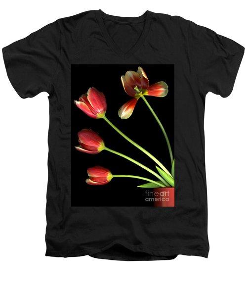 Pot Of Tulips Men's V-Neck T-Shirt by Christian Slanec