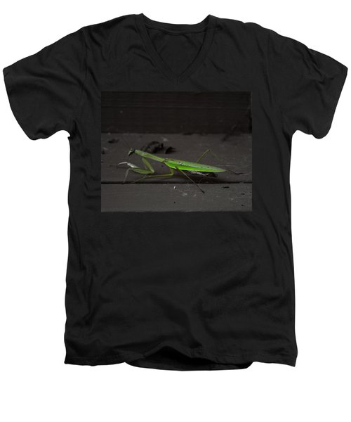 Praying Mantis 2 Men's V-Neck T-Shirt