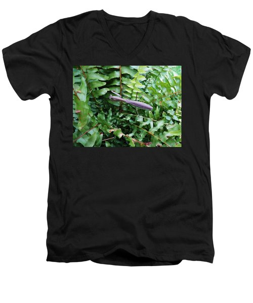 Praying Mantis Men's V-Neck T-Shirt