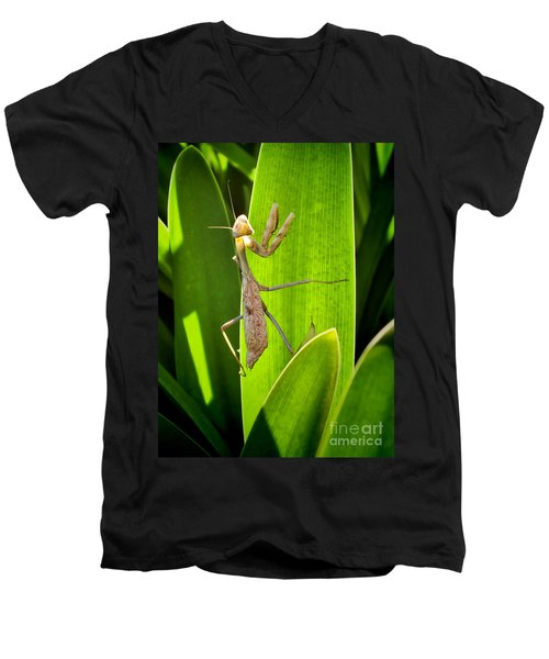 Men's V-Neck T-Shirt featuring the photograph Praying Mantis by Kasia Bitner