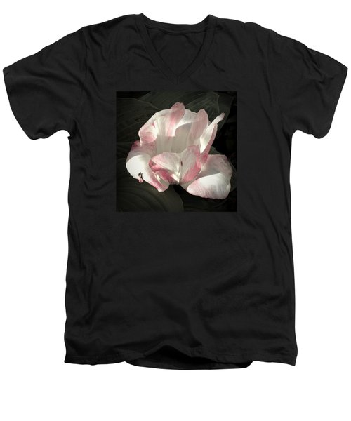 Men's V-Neck T-Shirt featuring the photograph Pretty In Pink by Photographic Arts And Design Studio