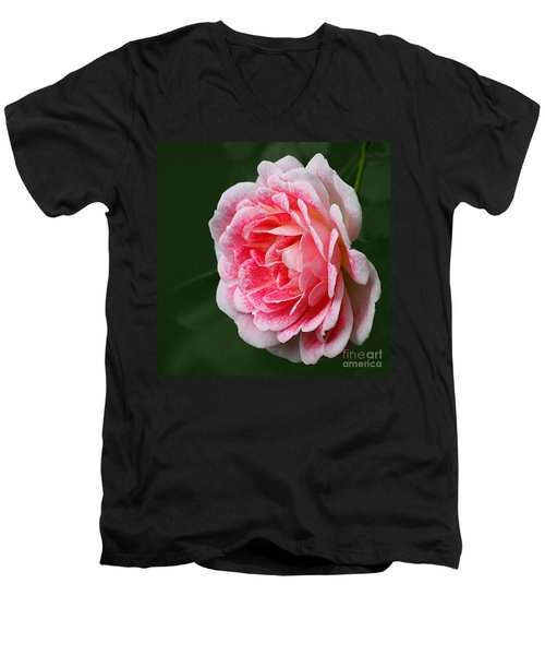 Pretty Pink Rose Men's V-Neck T-Shirt