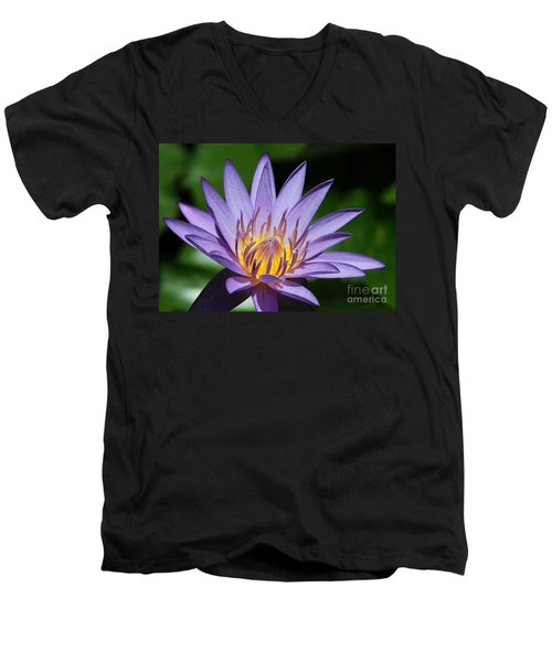 Pretty Purple Petals Men's V-Neck T-Shirt