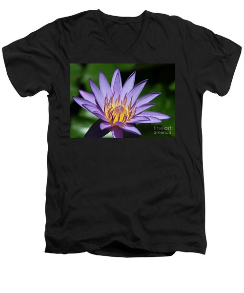 Pretty Purple Petals Men's V-Neck T-Shirt
