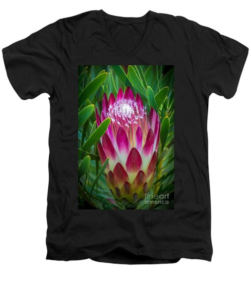 Protea In Pink Men's V-Neck T-Shirt