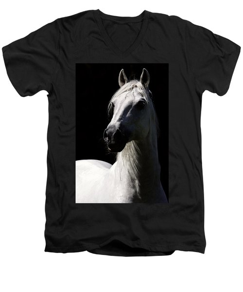 Proud Stallion Men's V-Neck T-Shirt by Wes and Dotty Weber