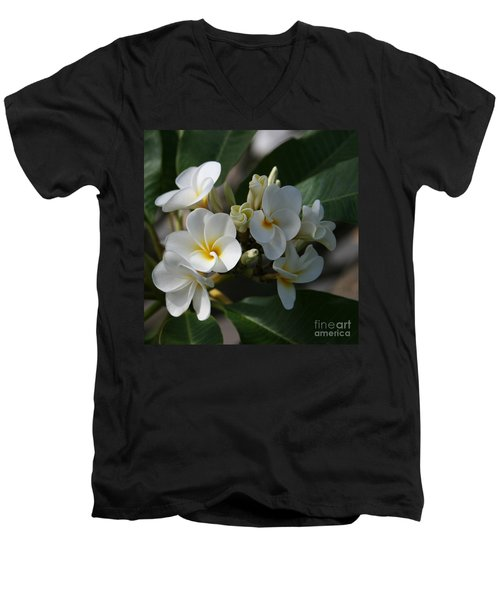 Pua Melia Na Puakea Onaona Tropical Plumeria Men's V-Neck T-Shirt