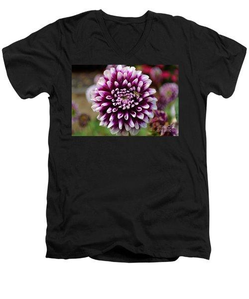 Purple Dahlia White Tips Men's V-Neck T-Shirt