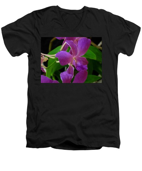 Men's V-Neck T-Shirt featuring the photograph Purple Over Green by Greg Allore
