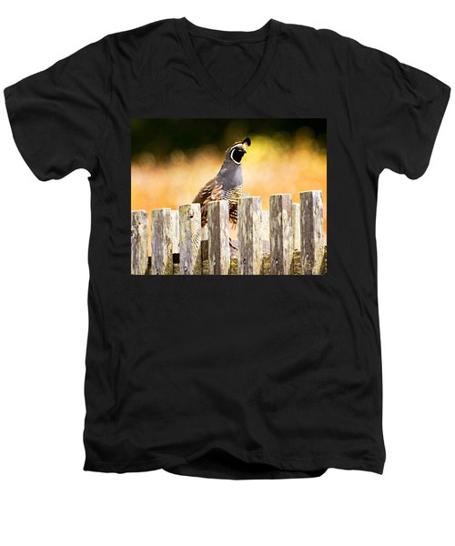 Quail Lookout Men's V-Neck T-Shirt